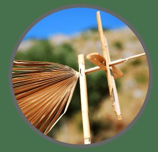Sicilia-delle-meraviglie-sostenibilità e coaching